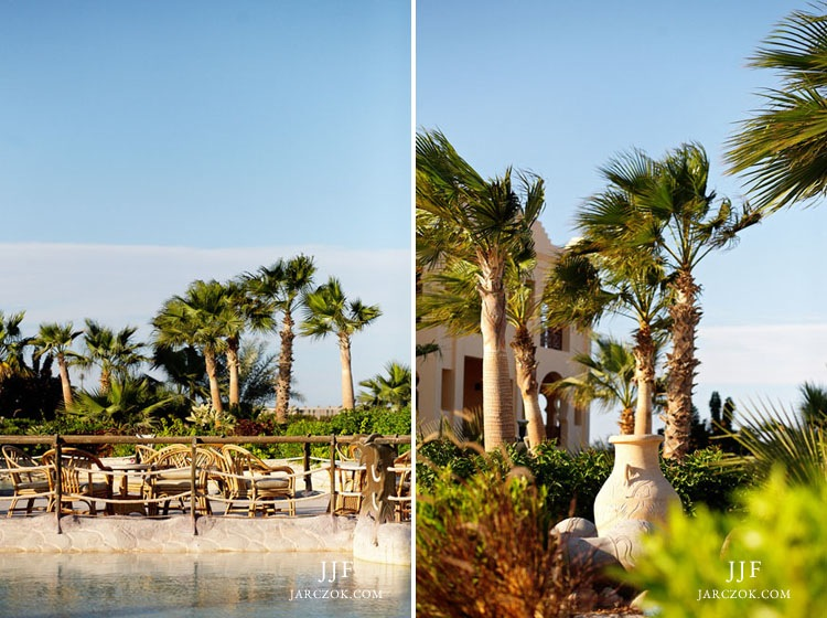 Sea Club Resort gardens in Sharm.